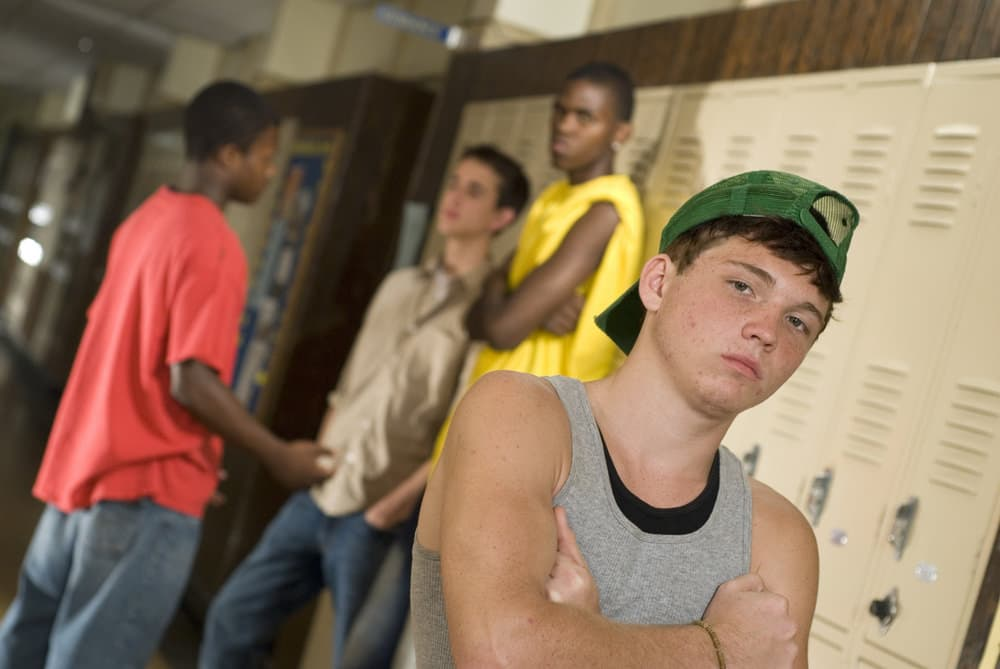 bullying behavior among teenagers Cyberbullying victimization and behaviors  teenage life is ever-present among first world teenagers,  be-the dominant form of bullying behavior among.